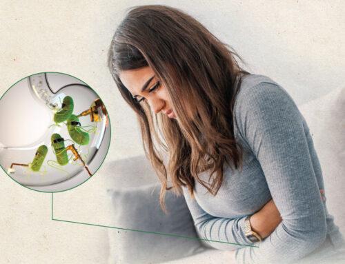 Simptomi infekcije Helikobakterijom i gastritis